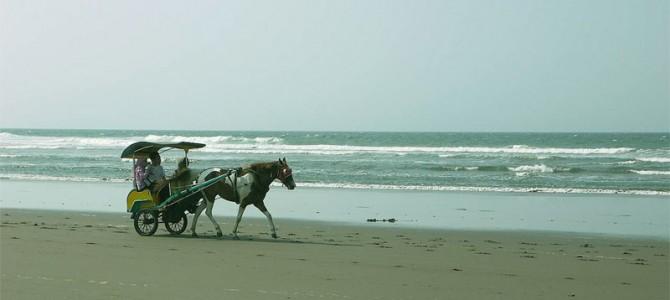 Wisata Jogja Pantai Parangtritis – Favorit Wisatawan